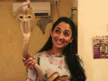 Shruti Ulfat Cobra Stunt: TV Serial Producers To Be Called For Questioning