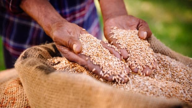 Food Fortification: FSSAI Sets Up Guidelines For Fortified Foods
