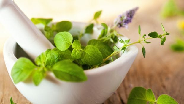 Ayurveda in Treating Cancer: 6 Herbs That Can Help Reduce Risks
