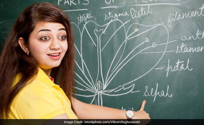 CBSE Board Exam: Tips To Ace Class 12 Biology Paper