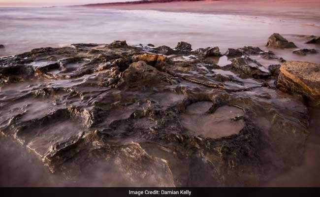 World's Biggest Dinosaur Footprint Discovered In 'Australia's Own Jurassic Park'