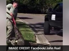 Watch: 9-Foot Alligator Pulled Out From A Drain In Florida