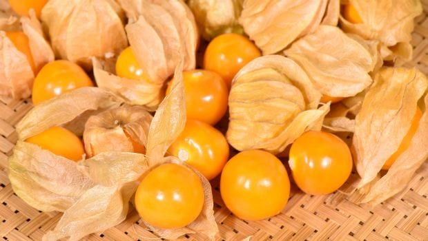 9 Marvelous Health Benefits of Cape Gooseberries (Rasbharies