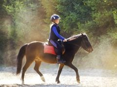 Learning Horse Riding Could Boost Mental Skills in Kids