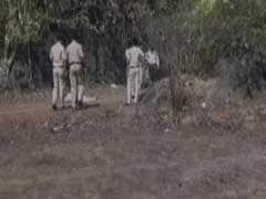 Irish Tourist Was Raped Before She Was Murdered In Goa: Forensic Report