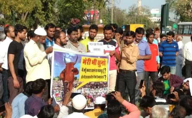 जयपुर : बीफ होने के शक पर होटल सील, सामाजिक संगठनों ने किया प्रदर्शन