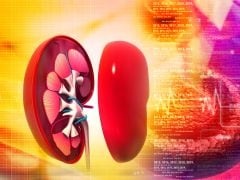 8 Diet and Lifestyle Changes That Can Help Prevent Kidney Disease