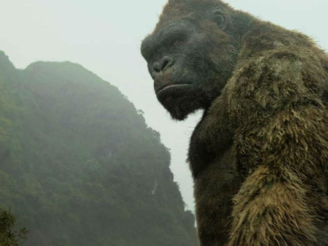 Kong: Skull Island Movie Review - Tom Hiddleston's Film Revives King Kong With 70s-Era Style