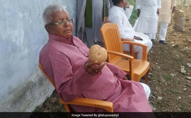 यूपी से मणिपुर तक सभी पका रहे हैं सरकार बनाने के लिए खिचड़ी, वहीं लालू अपने 'आलू' में बिजी