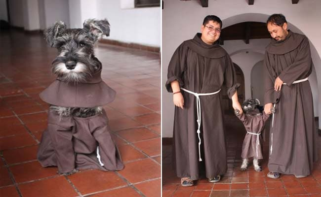 Meet 'Friar Moustache,' A Stray Dog Adopted By Bolivian Monks