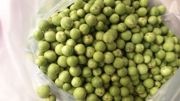 Pea Aubergine: A Seasonal Secret Ingredient Used in South