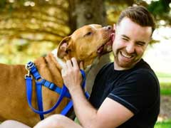 5 Ways To Protect Your Dog This Summer
