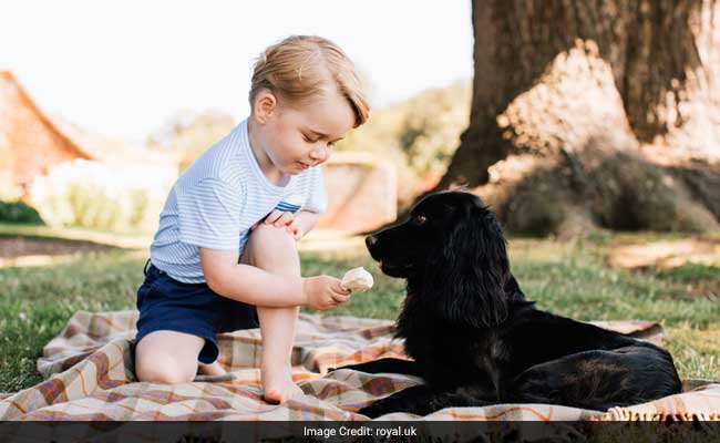 Britain's Prince George, 4, On ISIS Hit List: Report