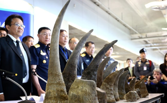Thailand Seizes Rhino Horns Worth $5 Million In Biggest Haul For Years