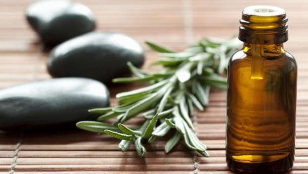 9 Amazing Rosemary Oil Benefits: From Relieving Pain to Boosting