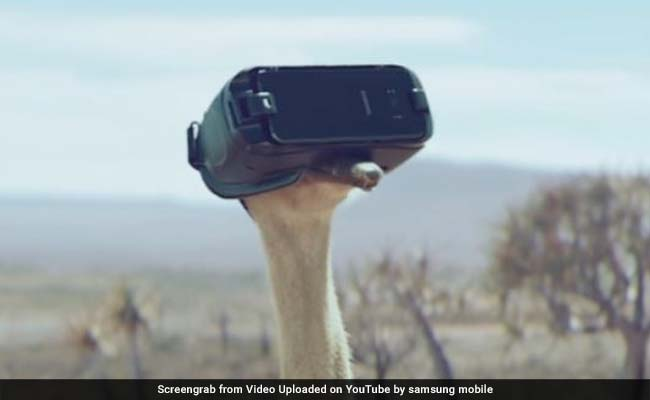 Watch: An Ostrich Trying To Fly In New Viral Ad Will Warm Your Heart