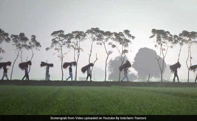 Thank You For The Food On My Plate: Viral Ad's Tribute To Indian Farmers