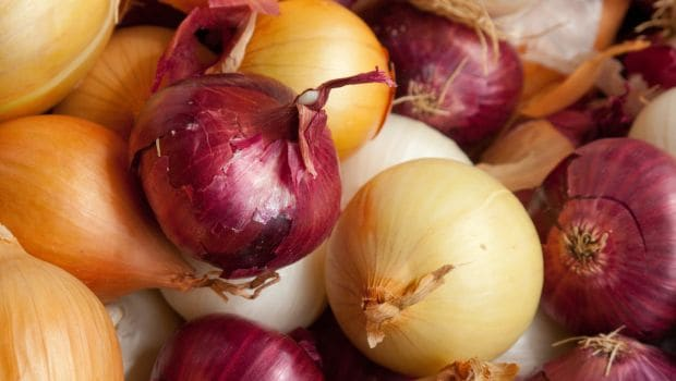 Red Versus White Onions: Is There Really Any Difference?