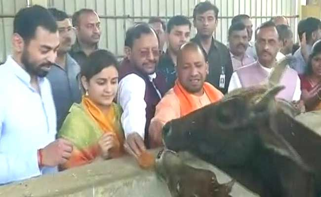 Samajwadi Party's Aparna Yadav Meets Yogi Adityanath Again, Says 'He Is Everyone's Chief Minister'
