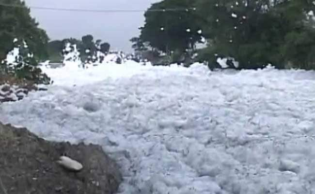 White Alert At Bengaluru Lake Again, Froth Flies After Rains In Bellandur