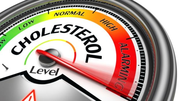 9 Foods That Can Help Increase Good Cholesterol in the Body