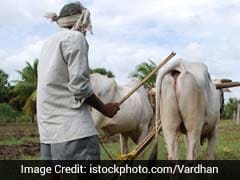 Farm Loan Waivers Could Burden Economy With Rs 2.7 Lakh Crore