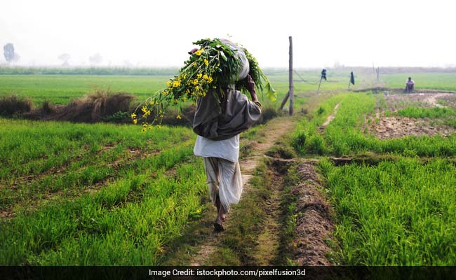 Non-Resident Indians To 'Adopt' 500 Villages