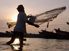 8 Tamil Nadu Fishermen Arrested By Sri Lankan Navy