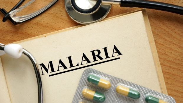 Dried Leaf Tablets Cured 18 Suffering From Drug-Resistant Malaria