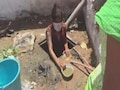 Video Shows Teens Cleaning Drain In Hyderabad, Case Against Orphanage