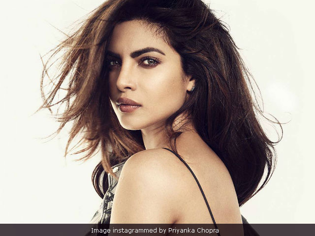Priyanka Chopra Says Indian Cinema 'Shouldn't Be Divided'