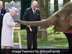 Queen Elizabeth Meets Baby Elephant Named After Her