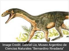 The Oldest Known Relative Of Dinosaurs Was A Total Freak, Experts Say