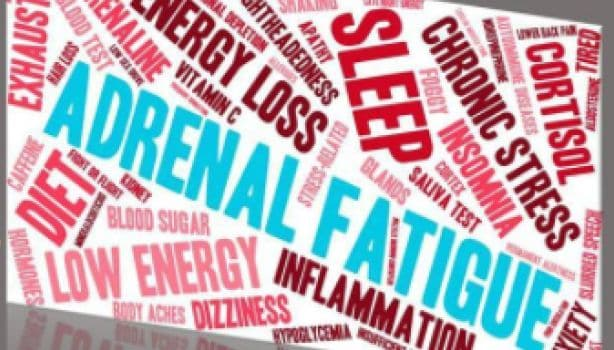 Adrenal Fatigue Diet: The Nutrition Required to Recover