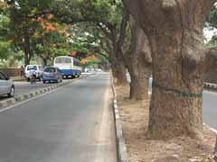बेंगलुरु : 122 पेड़ों को कटने से बचानेे के लिए लोगों ने किए 22 हज़ार ईमेल...