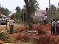 Trees Were Being Uprooted In Garden City. Bengaluru Turned To Crowd Funding