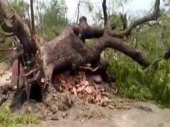 बिहार में आंधी-तूफान और वज्रपात की चपेट में आने से 23 लोगों की मौत