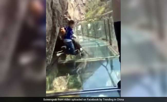 Brave Child Drags Petrified Dad Along Glass Skywalk In Hilarious Video