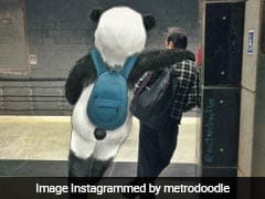 Mystical Creatures Become A Part Of Delhi Metro In These Creative Doodles