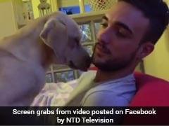 रूठे मालिक को मनाने के लिए कुत्ते ने की दिल छूने वाली हरकत, 2 दिन में 26 लाख बार देखा गया यह वीडियो