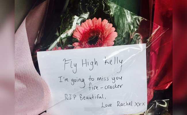 fly high kelly