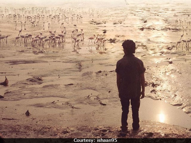 Majid Majidi Wraps The Shooting Of Beyond The Clouds