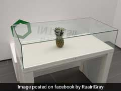 Students Left A Pineapple On An Empty Table And People Thought It Was Art