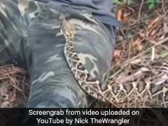 This Man's Terrifying Encounter With A Rattlesnake Gets 6.7 Million Views