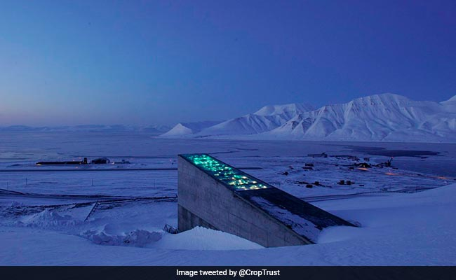 Don't Panic, Humanity's 'Doomsday' Seed Vault Is Probably Still Safe