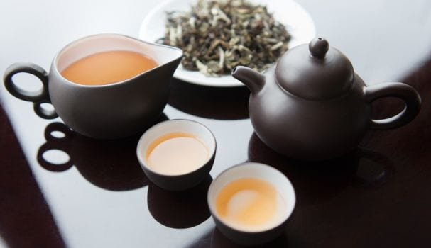 What is White Tea and What Makes it So Expensive?