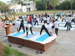 International Day of Yoga 2017: AMU's Department Of Physical Education Conducts Seven Day Yoga Workshop