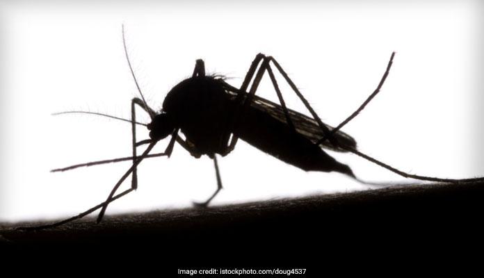 डेंगू के शुरुआती स्तर का पता लगाने के लिए नया बोयोसेंसर को हुआ ईजाद