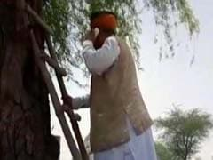 No Network So Minister Arjun Ram Meghwal Had To Climb Ladder And Tree To Make A Call