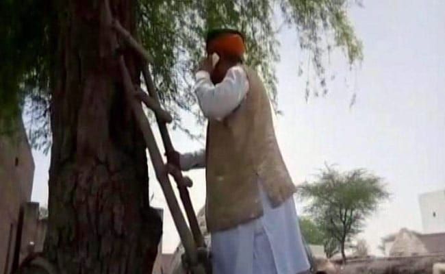 Connectivity Issues? Minister Meghwal Climbs Tree On Villagers' Advice